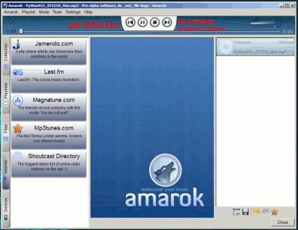 Amarok en Windows