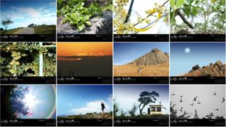 Calendario Natural Life